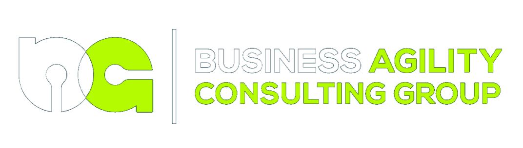 Business Agility Consulting Group